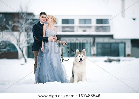Bride and groom in winter with dog malamute on snow and home background. Groom hugging bride and she looks at him tenderly.