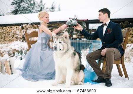 Bride and groom in winter with dog malamute sitting at table and clink glasses with wine. On the table is bouquet.
