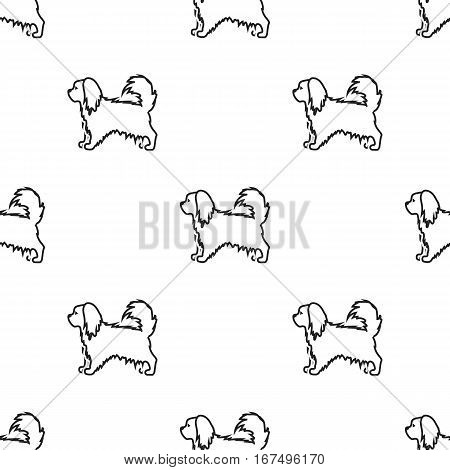Pekingese vector illustration icon in black design