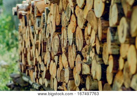 Natural wooden background Firewood stacked and prepared for use pile of wood logs