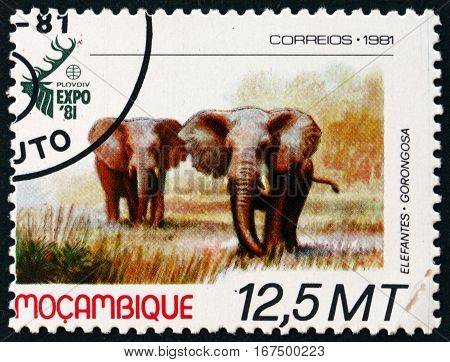 MOZAMBIQUE - CIRCA 1981: a stamp printed in Mozambique shows Elephants World Hunting Exhibition Plovdiv Bulgaria circa 1981