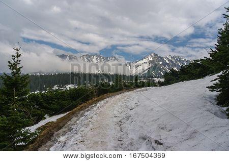 Panorama mountain spring landscape. Tatry. Poland .