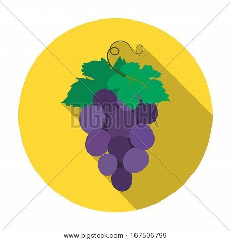 Bunch of wine grapes icon in flat design isolated on white background. Spain country symbol stock vector illustration.