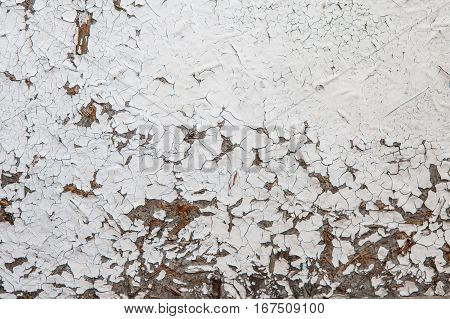 Old and peeled creaky paint In course of time the paint of white tone peeled off the old planks and crackled wood texture background colorful cracks in the paint vintage abstract grunge