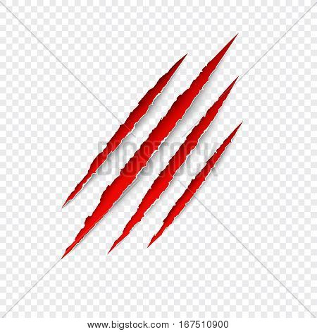 Scratches isolated on transparent background. Vector red scratch set. Claws scratching animal (cat tiger lion bear) vector illustration.