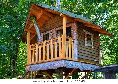 a wooden cabin built in a tree
