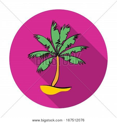 Palm tree icon in flat design isolated on white background. Surfing symbol stock vector illustration.