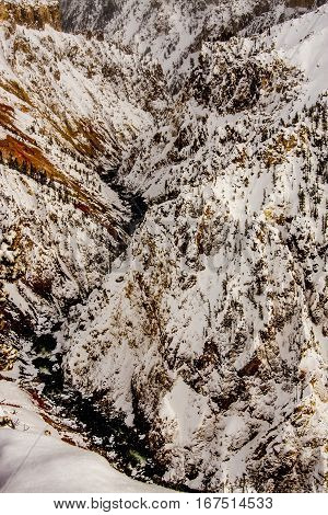 Yellowstone Canyon with snow in the winter