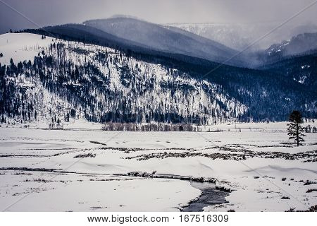 Frozen landscape and river in Yellowstone National Park
