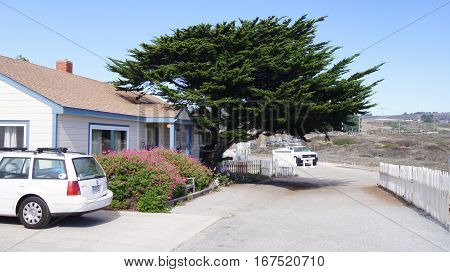 CARMEL, CALIFORNIA, UNITED STATES - OCT 6, 2014: beautiful Cypress, a white house and a car along the famous Pacific Coast Highway or Hwy 1.