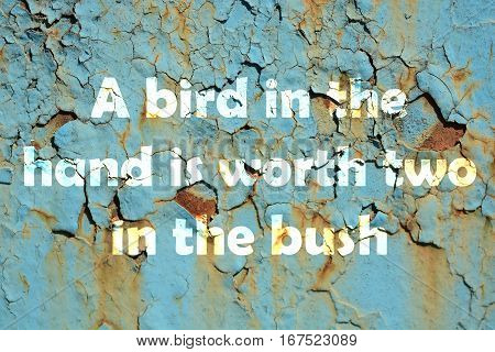 A Bird In The Hand Is Worth Two In The Bush. Words Print On The Grunge Metallic Wall