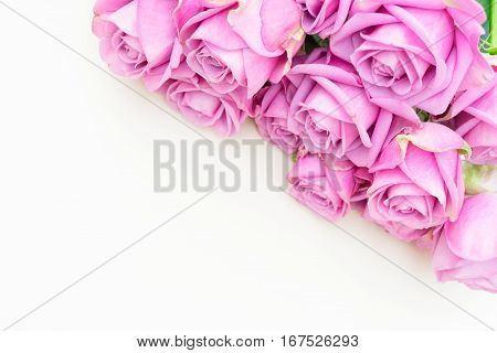 Valentines day violet fresh roses border close up top view flat ly scene