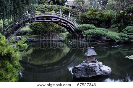 A Japanese garden is captured on a serene morning.