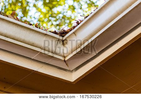Closeup of a rain gutter on the side of a house clogged with leaves.