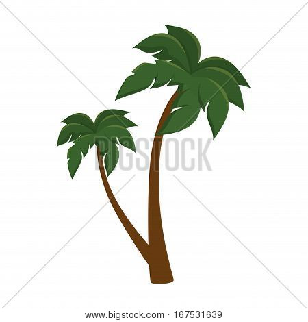 tree palm isolated icon vector illustration design