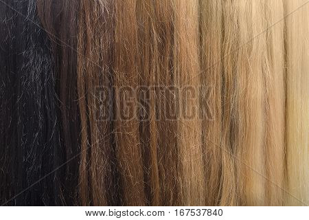 Colored hair samples for female wig. Backgrounds and textures