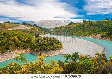 Beautiful landscape of New Zealand with Southern Alps peaks, turquoise river and blooming yellow gorse
