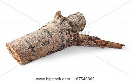 Single poplar log horizontally flipped isolated on white background