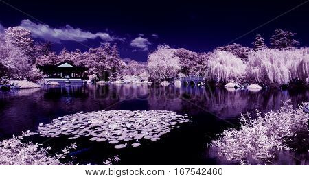 A Chinese Garden is captured in an infrared image.