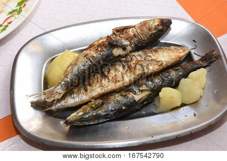 Traditional sardine dish with potatoes from Portugal