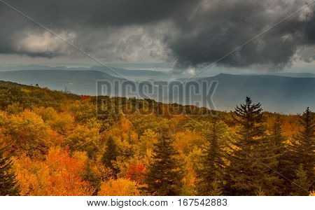 Red autumn leaves across Dolly Sods Wilderness area in West Virginia with panorama to distant mountains