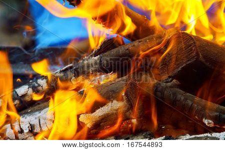 Fire Wood Warm Orange Bonfire