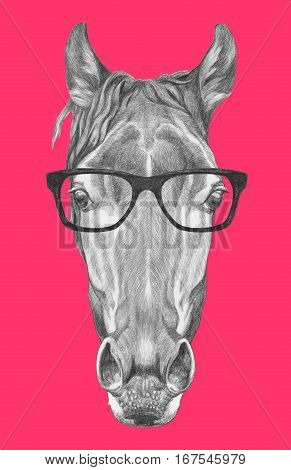 Portrait of Horse with glasses. Hand drawn illustration.