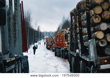 Loaded convoy of long vehicles mooving on winter road among forest