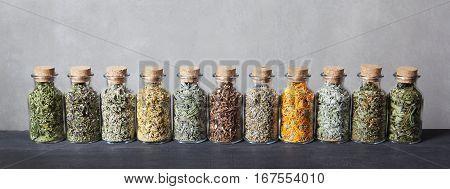 Hemp, thyme, lemon balm, chamomile, sage dandelion roots wormwood calendula mint hawthorn fireweed