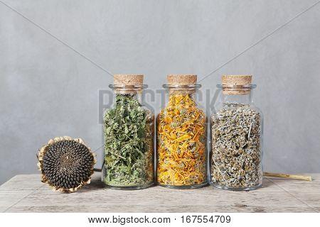 Hemp, calendula and wormwood. Dried sunflower with seeds