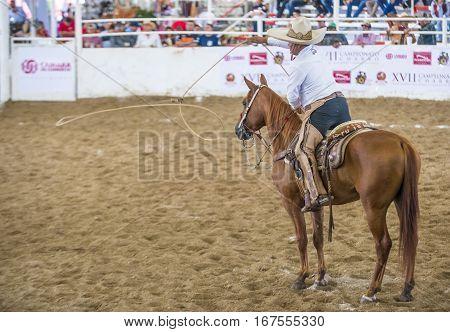 GUADALAJARA MEXICO - SEP 01 : Charro participates at the 23rd International Mariachi & Charros festival in Guadalajara Mexico on September 01 2016.