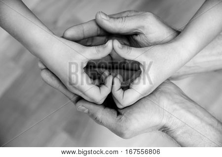 Children's hands form a heart in the hands of an adult. Black and white.