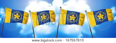 Hamilton flag, 3D rendering
