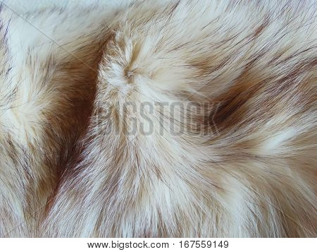 Fur coat of scribe gift clothes women's texture wallpaper background