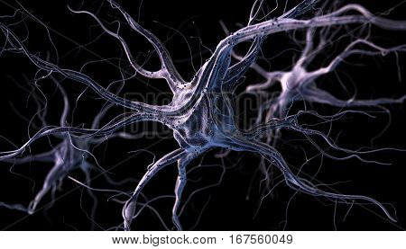 Neurons and nervous system. 3d render of nerve cells. 3D illustration