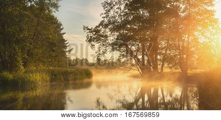 Warm spring morning. Spring morning scene with bright sunlight and mist over lake. Soft sunlight shine through fog on lake. Spring background in warm colors.