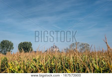 Cornfield in Bretagne with a Mont-Saint-Michel on background, Normandie, France