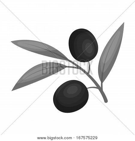 Branch of olives icon in monochrome design isolated on white background. Spain country symbol stock vector illustration.