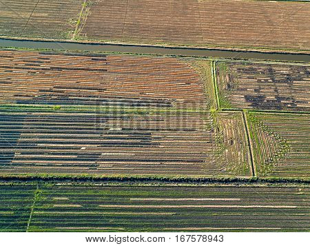 photo of Aerial View Rice Fields Portugal