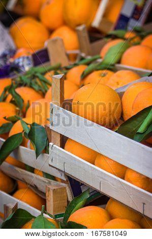 Orange fruit in the wooden box in food market