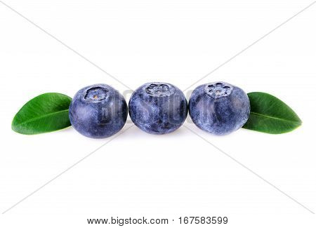 three blueberries in a row straight line isolated on white