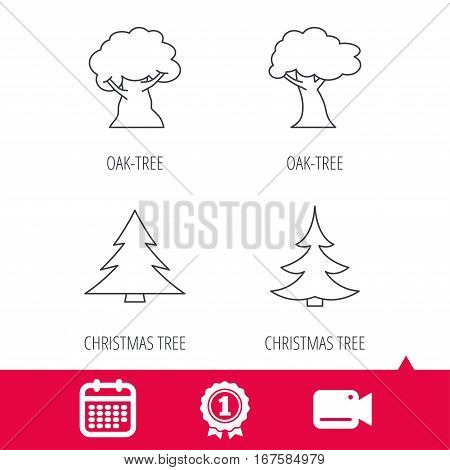 Achievement and video cam signs. Tree, oak-tree and christmas tree icons. Forest trees linear signs. Calendar icon. Vector