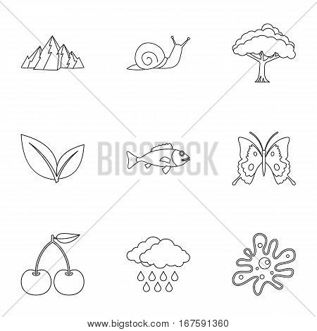 Beautiful nature icons set. Outline illustration of 9 beautiful nature vector icons for web