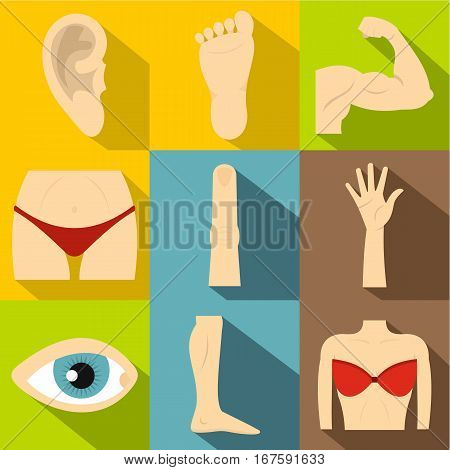 Body parts icons set. Flat illustration of 9 body parts vector icons for web