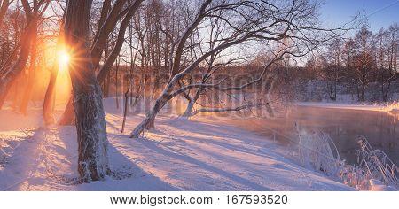 Morning Winter Scene