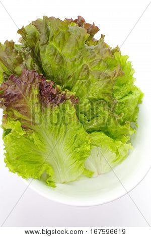 Fresh green lettuce leaf isolated on a white background