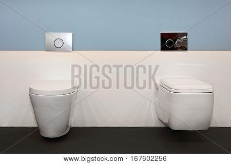 Two Ceramic Toilet Seat in Contemporary Bathroom