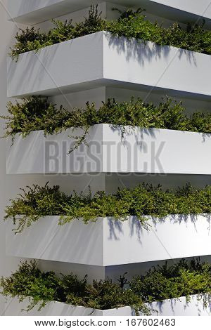 Contemporary Vertical Gardens at Building Wall Corner