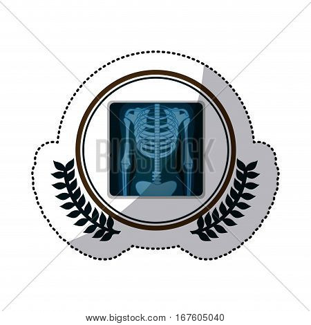 color sticker with x-ray of bones in circle with olive branches vector illustration