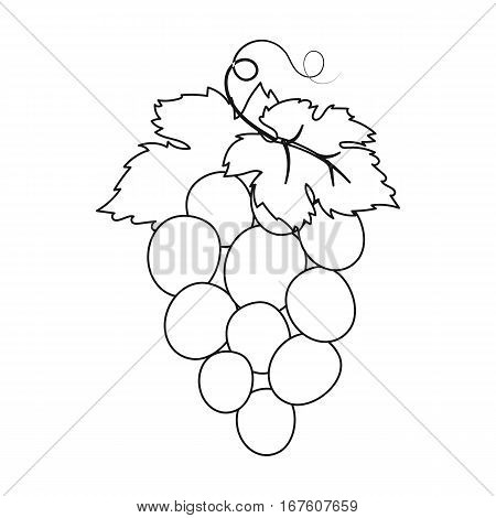 Bunch of wine grapes icon in outline design isolated on white background. Spain country symbol stock vector illustration. - stock vector
